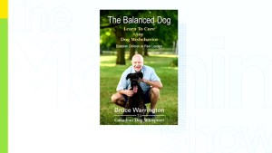 What exactly is a Balanced Dog?